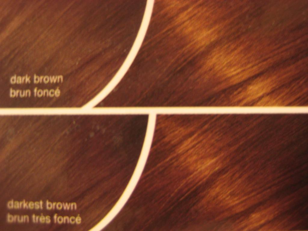 shades of dark brown hair color